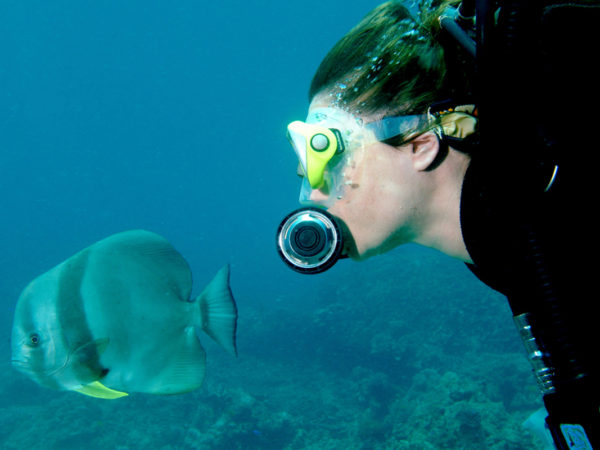 Underwater-Paradise