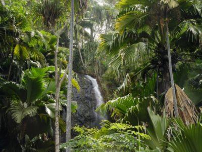 IMG12 Waterfall Vallee de Mai