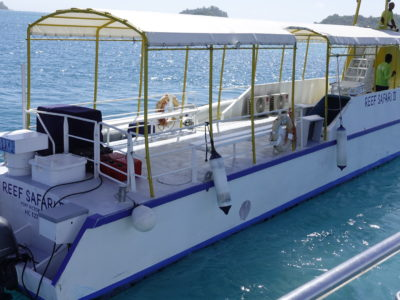 Full Day Reef Safari - Tansfer Boat