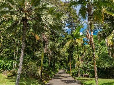 Mahe Island-Botanical-Garden-1