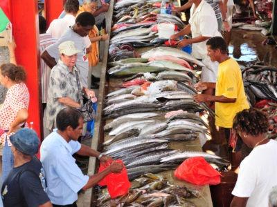 Mahe Island-Market-1