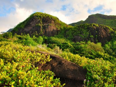 Mahe Island-Mountains-on-Anse-Major-Trail-1