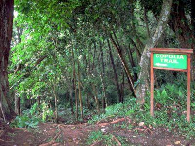 Mahe Island-copolia-trail