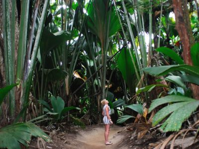 Praslin Island-Valle de Mai