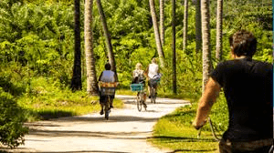 la-digue-bicycle-tour