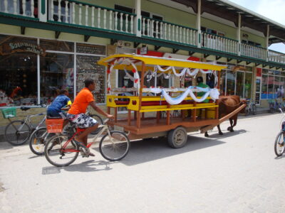 La Digue Wedding Ox Cart